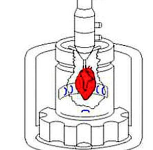 MDE GmbH - Isolated Heart Perfusion System - Structure of the Sensor