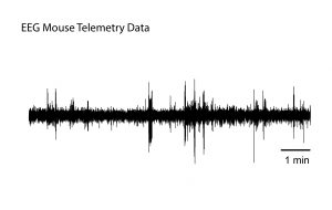Kaha Sciences - EEG Mouse Telemetry Data