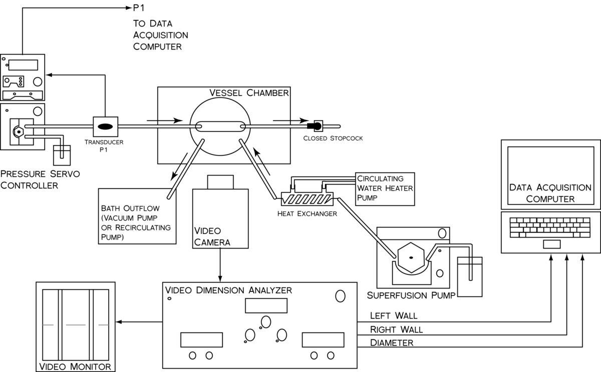 Evans Stainless Steel Gas Regulator MG-16-08-GM-6-8T 500 PSI to Vacuum-125 PSI